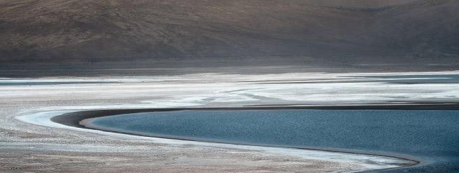Lagoon detail - Atacama